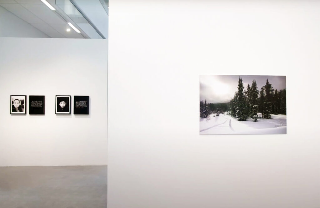 'Revisions' installation view